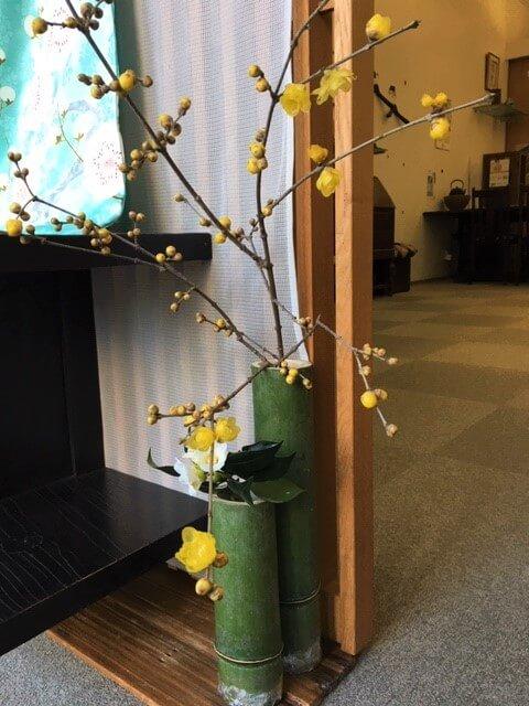 2019年 新年を寿ぐ 和の室礼 蝋梅 竹の花器 熊本市中央区 着物専門店 わのくに