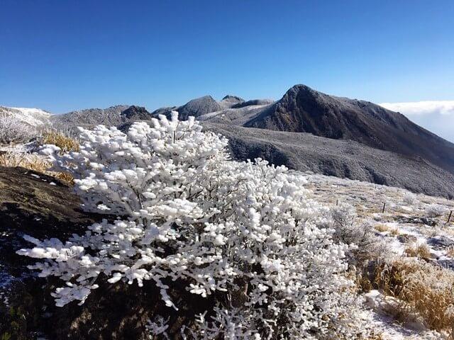 登山 樹氷 着物専門店 和の國